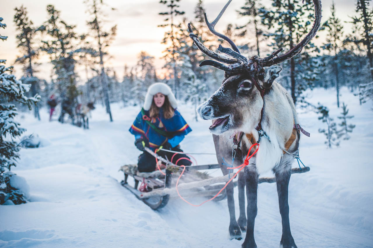 Lapland-slee-met
