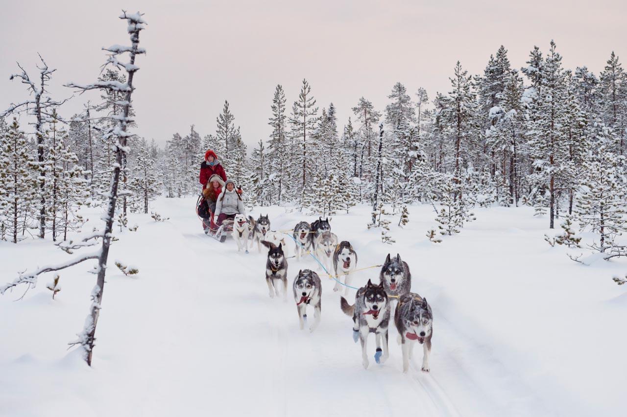 Lapland-slee